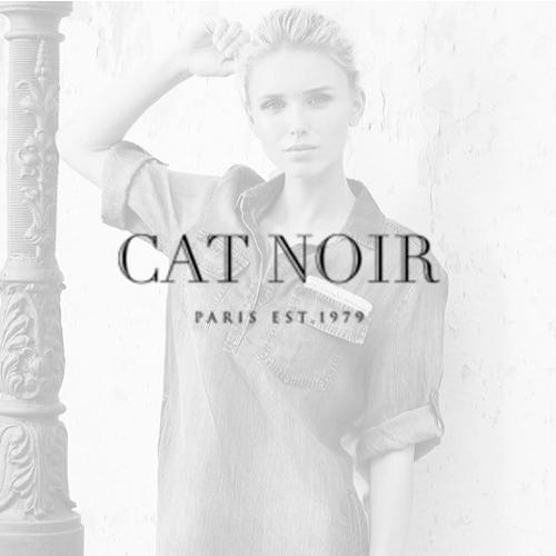 cat_noir_l